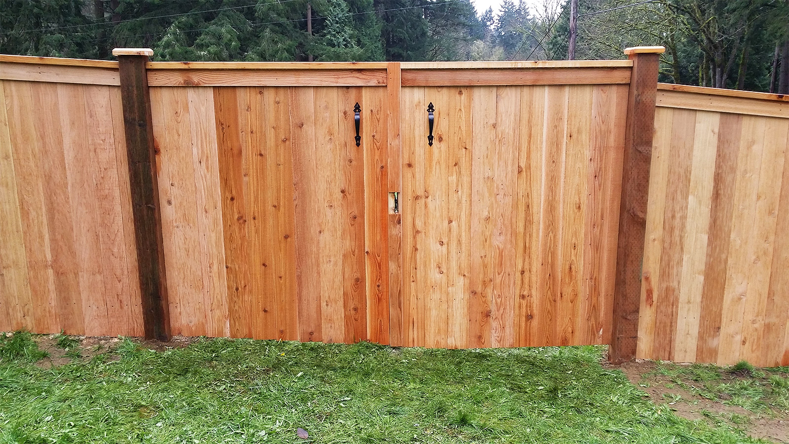 12ft Wide Double Swing Gate (Front View)