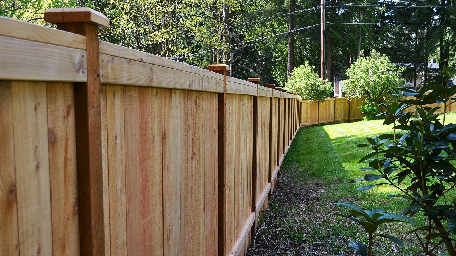 Back View of 6ft Tall Cedar Panel Fence